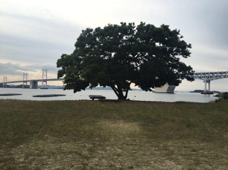 沙弥島(しゃみじま)ナカンダ浜