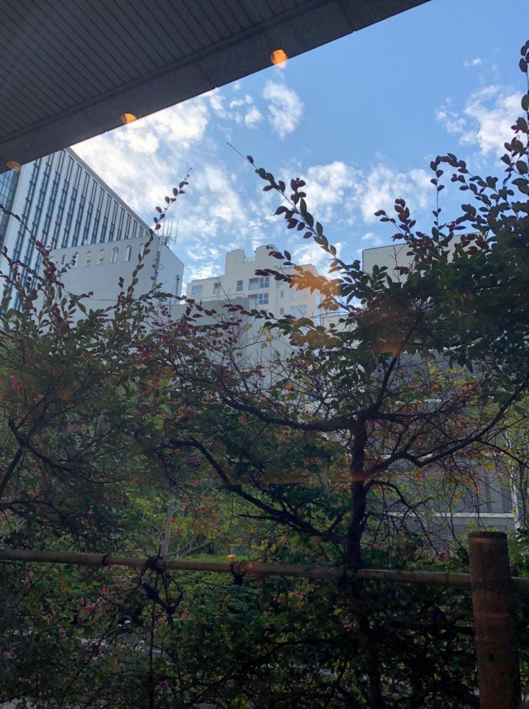 都市センターホテルの窓際の席